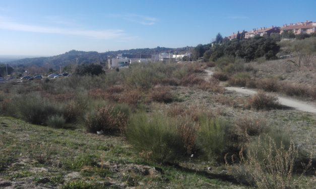 Pleno al Quince en el Ayuntamiento de Torrelodones