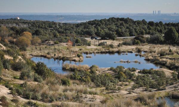 Plan de Restauración y Conservación de los Ríos y Humedales
