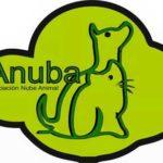 Campaña de ANUBA de recogida de enseres para animales abandonados