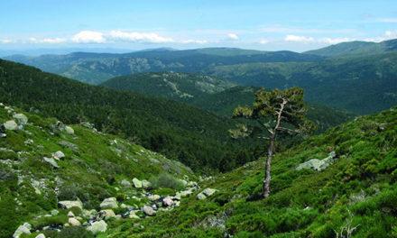 La UNESCO amplía la Reserva de la Biosfera de la Cuenca Alta del Manzanares