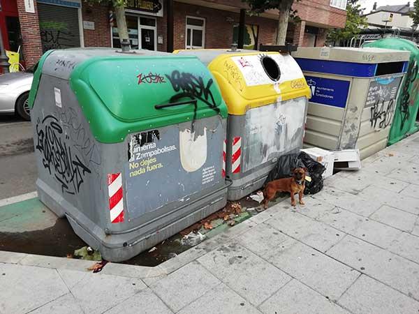 contrato de basuras de Torrelodones-urbaser