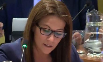 Ciudadanos Torrelodones pide mejorar la accesibilidad del Centro Infantil de Terapia y Ocio