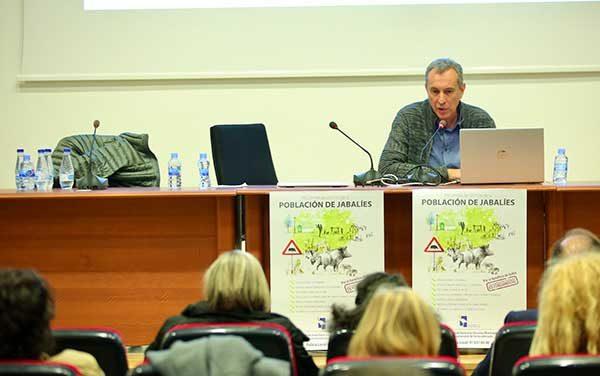 Las Rozas dota con 500.000 euros medidas para control de población de jabalíes