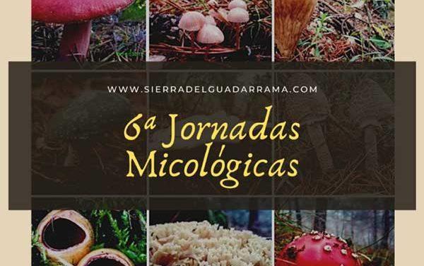 Jornadas micológicas en la Sierra de Guadarrama