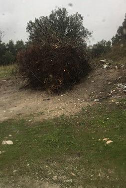 Guadarrama intensifica el control sobre vertidos de residuos