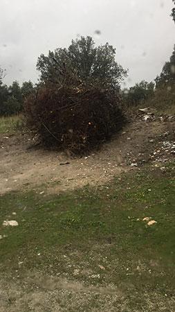 vertido de residuos Guadarrama
