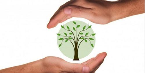 Jornadas de educación medioambiental en Alpedrete