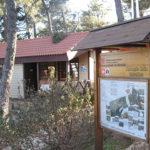 Visitas guiadas al Arboreto Luis Ceballos durante el verano