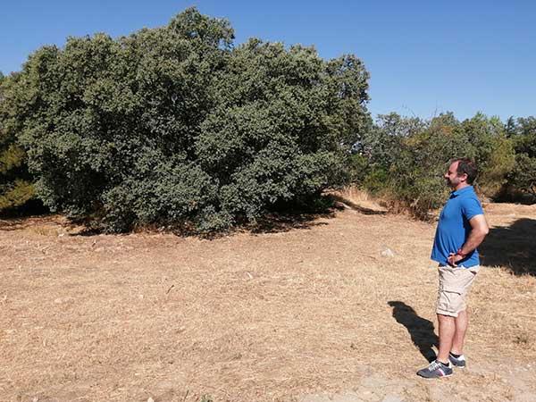 Nueva oportunidad para proteger el entorno de Las Marías, a través de una permuta