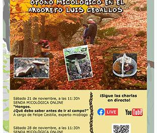 Exposetas 2020, otoño micológico en el Arboreto Luis Ceballos