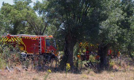 El Pleno de Guadarrama aprueba el PAMIF, actuación contra incendios forestales