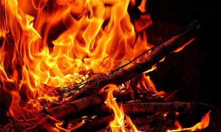 El Ayuntamiento de Torrelodones autoriza la quema de restos vegetales
