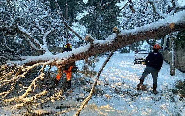 Torrelodones solicitará ser declarado zona catastrófica tras la borrasca Filomena