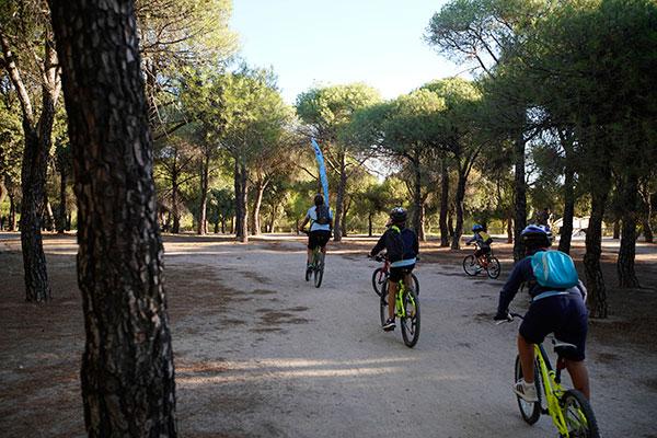 Las escuelas deportivas de exterior en Las Rozas retoman su actividad