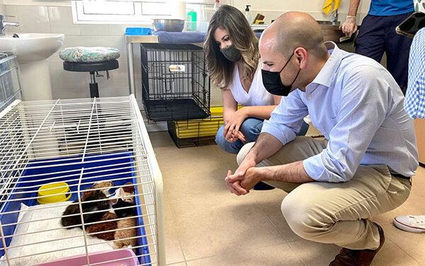 Más de 120 adopciones en el Centro Integral Canino de Majadahonda