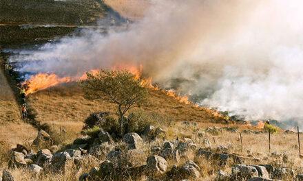 Plan de prevención ante incendios forestales en Torrelodones