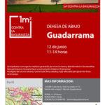 "Guadarrama se une al proyecto ""Libera, unidos contra la basuraleza"""