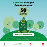 """""""Reciclo y reforesto"""" Ecovidrio inicia una campaña en 17 localidades para aumentar el reciclado"""