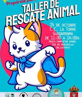 Taller de rescate animal en Guadarrama